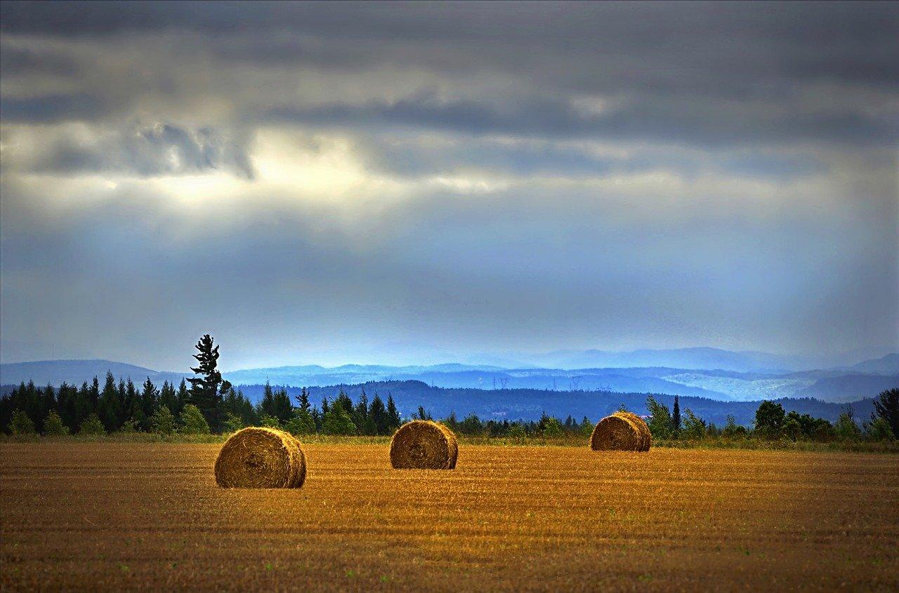 landscape-2225774_1280